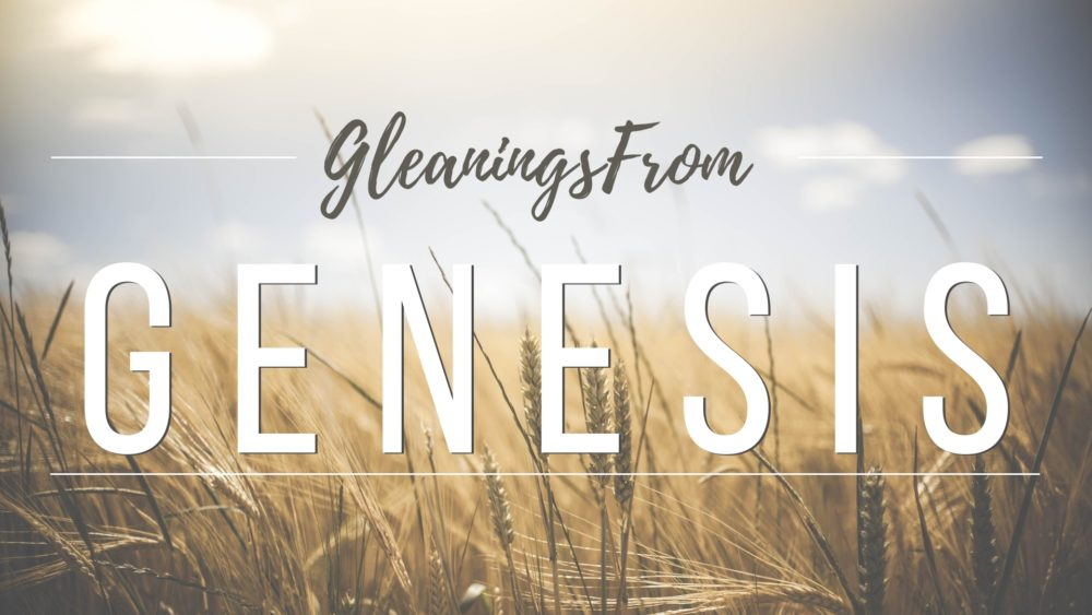 Gleanings From Genesis (Current Study)